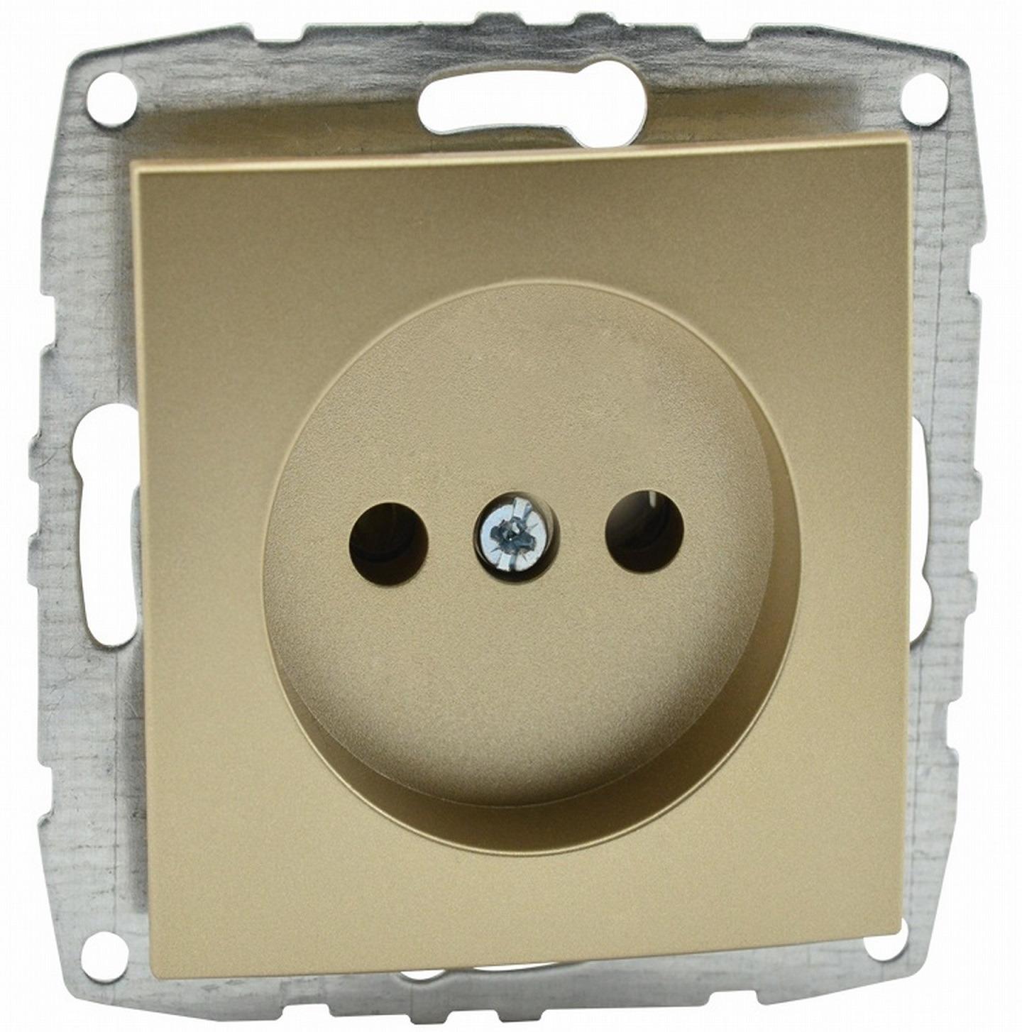 Розетка Mono D/L без заземления титан (механизм) 500-002222-116 фото
